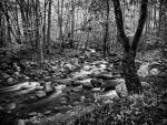 oconaluftee-river copy