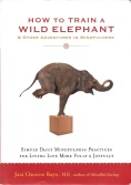 Book Cover How To Train a Wild Elephant