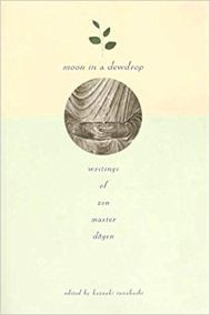 Moon in a dewdrop cover